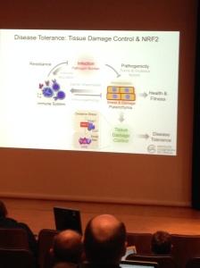Damage Control Slide