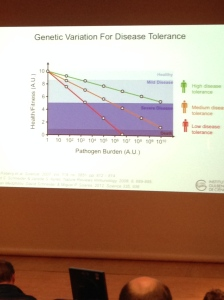 Disease Tolerance Slide