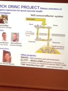 Nrf2 Sensor Cycle Slide